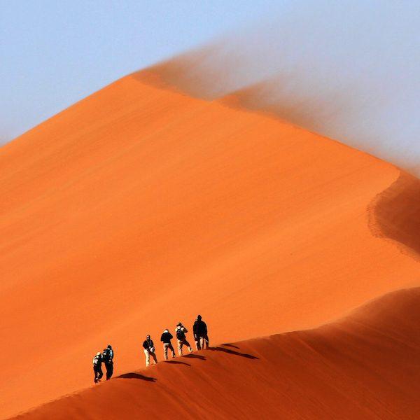 Desert 600